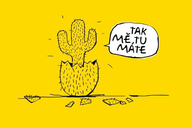 Operátor Kaktus startuje