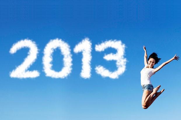 Co přinesl rok 2013
