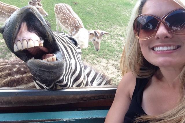 Instagram: Selfie se zvířaty? Zabíjíte je tím!