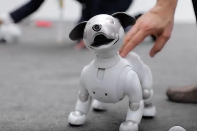 Robotický Aibo na CES předvedl úžasné kousky