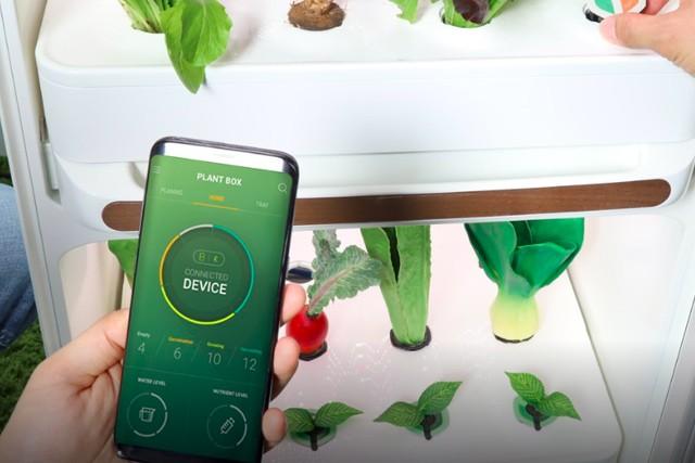 Pěstujte salát i mrkev doma pomocí vynálezu Plantbox
