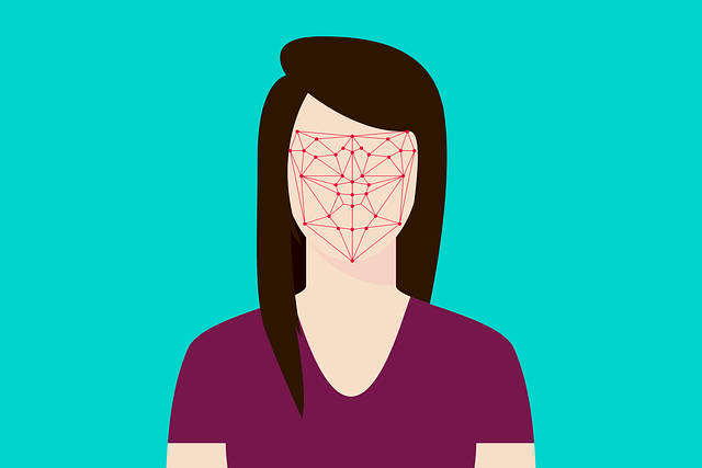 Francie bude ověřovat totožnost přes rozpoznání obličeje