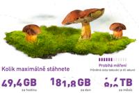Měření rychlosti internetu ADSL.cz